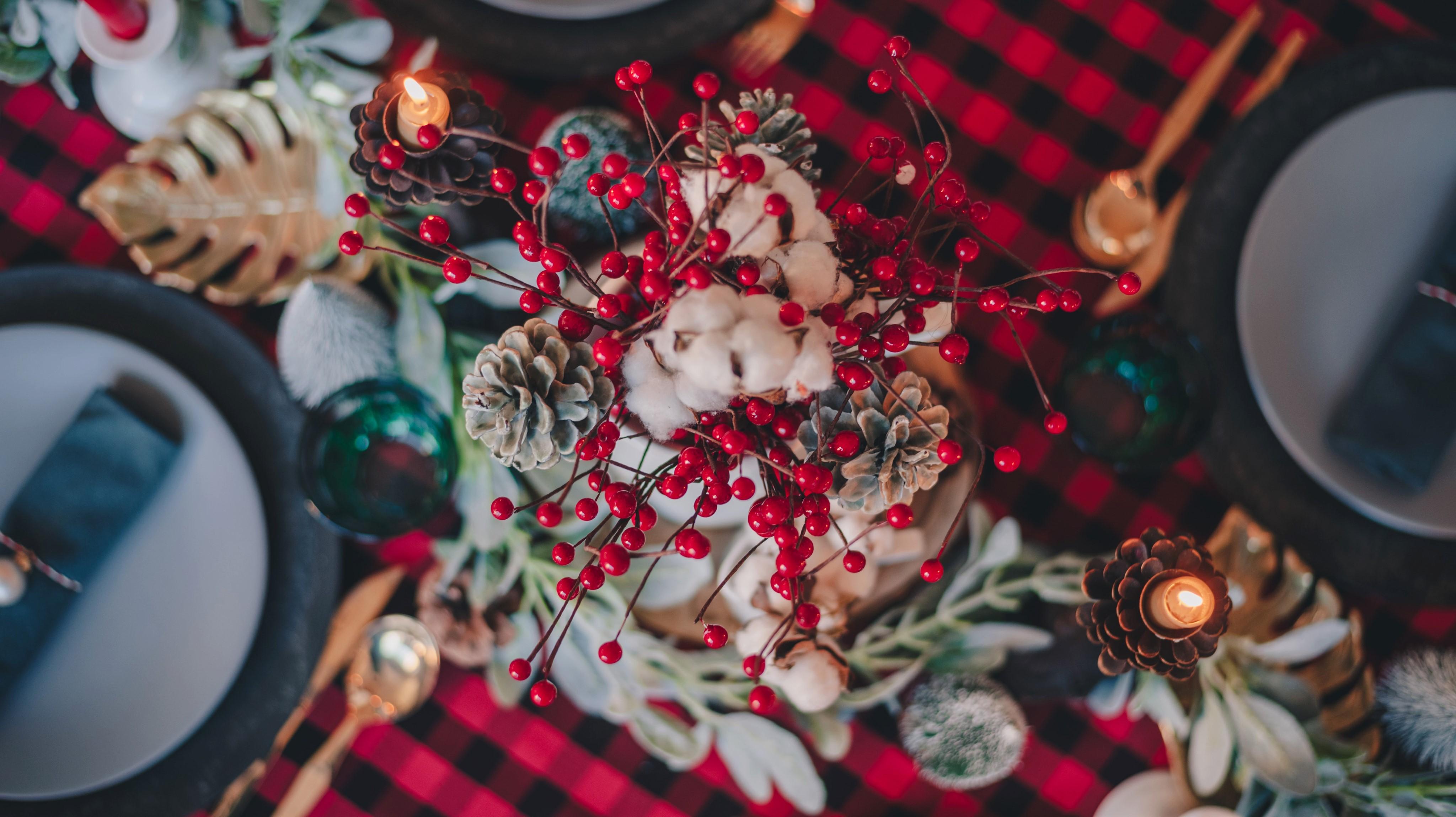 Être l'unique vegan au repas de Noël